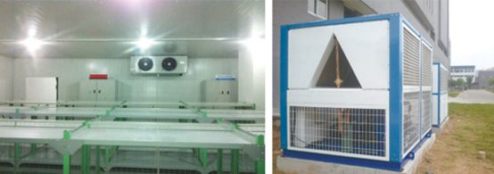 Mayinglong Pharmaceutical High-temperature Medicine Cold Storage