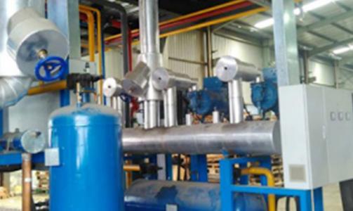 hanghai Shanpu Supply Chain Large Logistics Cold Storage Project