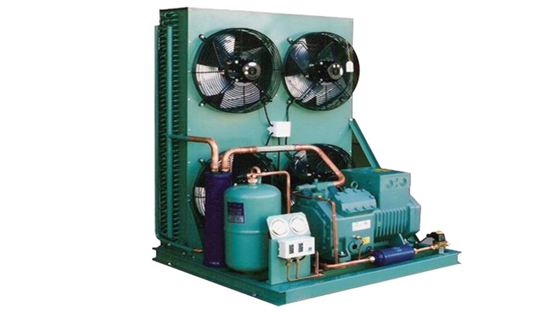 Two Stage Air Cooled Piston Condensing Unit (-40~-25℃)